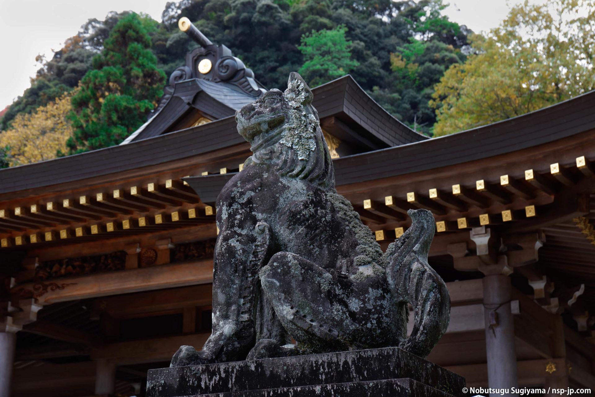 護国神社-本殿前の狛犬 | 岐阜 故郷巡礼 by 杉山宣嗣