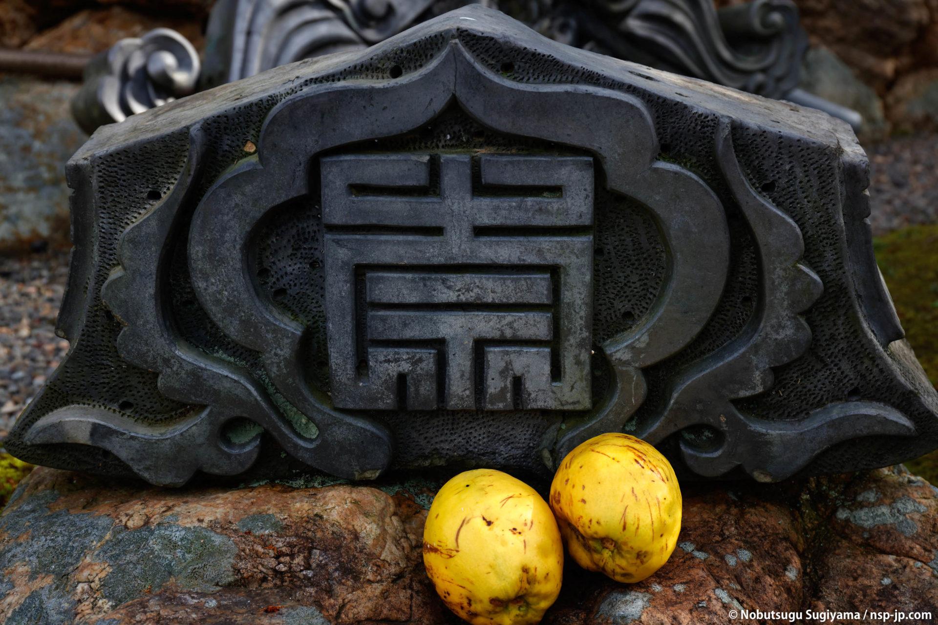 崇福寺-稲葉一鉄寄進の梵鐘 | 岐阜 故郷巡礼 by 杉山宣嗣