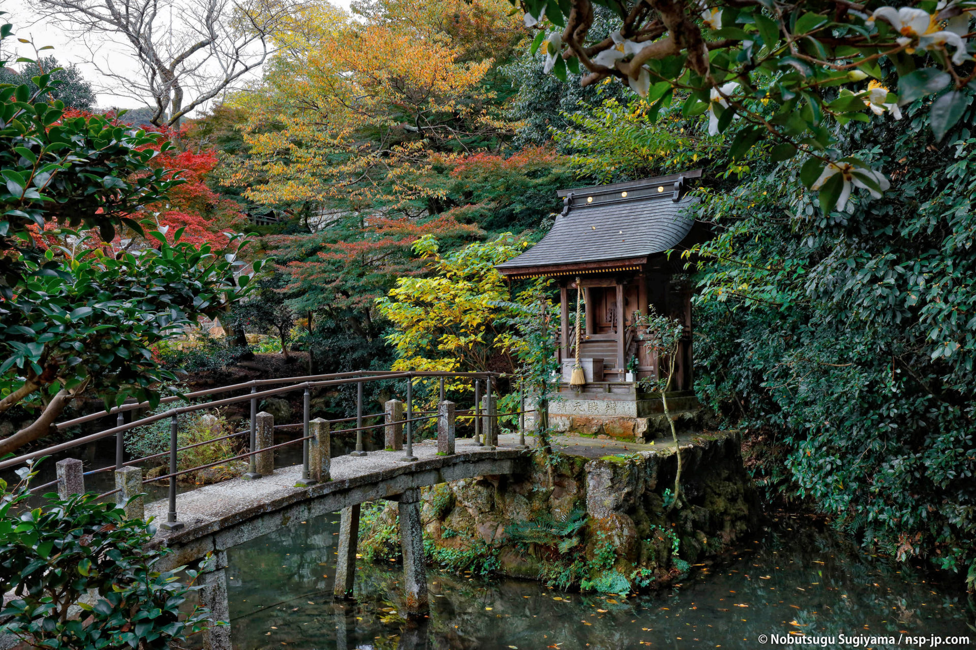 伊奈波神社-松尾神社 | 岐阜 故郷巡礼 by 杉山宣嗣