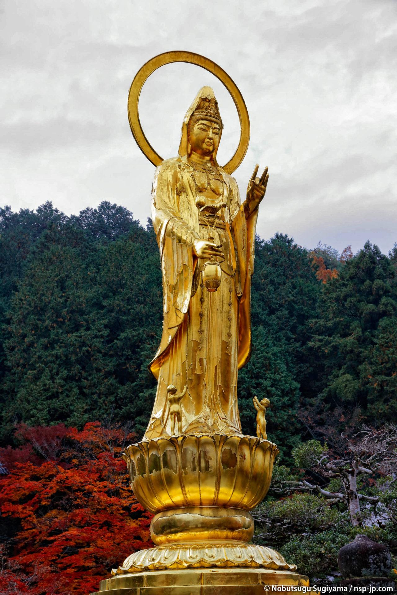 三田洞弘法(法華寺) | 岐阜 故郷巡礼 by 杉山宣嗣