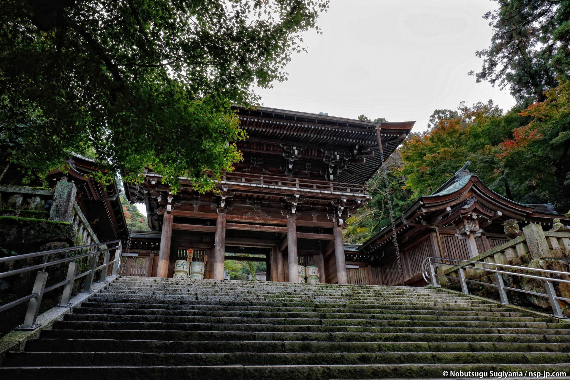 伊奈波神社-石段から楼門を望む | 岐阜 故郷巡礼 by 杉山宣嗣